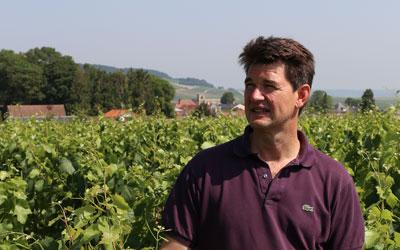 Olivier Bonville, un vigneron 100% Chardonnay